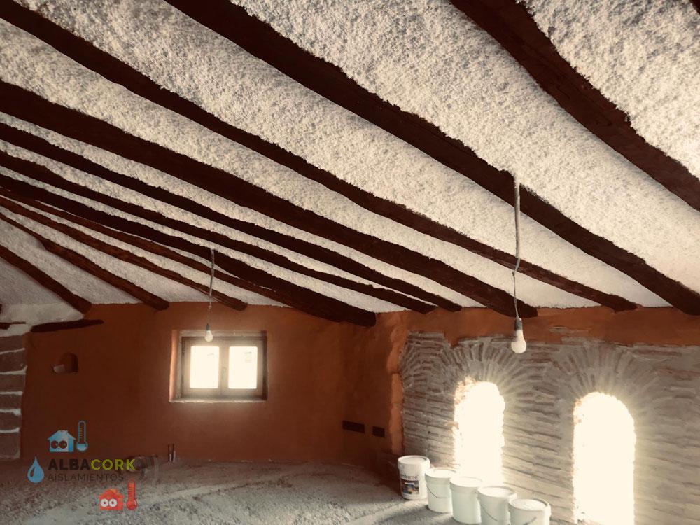 Celulosa proyectada para locales en Albacete